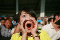 Soccer fan Stock Photography