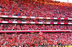 Soccer Fans, Red Crowd, Benfica Stadium, Football Champions stock photo
