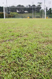 Soccer field. With a focused front ground Royalty Free Stock Images