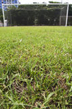 Soccer field. With a focused front ground Royalty Free Stock Photo