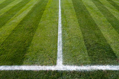 Soccer field. Green natural grass of a Football soccer field Royalty Free Stock Images