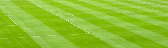 Soccer Field. A green soccer field as a background Stock Photography