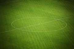 Soccer field. Center of soccer field with white lines on grass Stock Image
