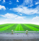 Soccer field and blue sky Royalty Free Stock Photo