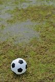 Soccer field. Stock Photo