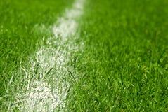 Soccer field detail Stock Photo