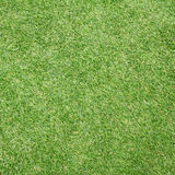 Soccer field grass. For art work Royalty Free Stock Photography
