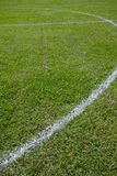 Soccer field grass Royalty Free Stock Photography