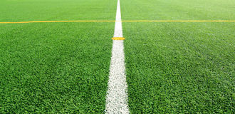 Soccer field with line Royalty Free Stock Photography