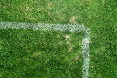 Soccer field markings grungy grunge Stock Image
