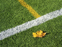 Soccer Field's Lines in Autumn Royalty Free Stock Images