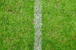 Soccer Field with a Vertical White Line. Freshly green football field with a vertical white line Stock Photo