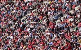 Soccer followers at stadium Stock Image