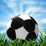 Soccer and football. Royalty Free Stock Photography