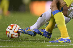 Soccer or football action Stock Photography