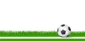 Soccer football ball on green grass over white background Stock Photography