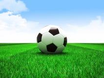 Soccer football field Royalty Free Stock Photos