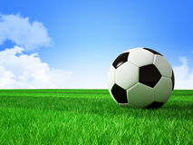 Soccer football field Royalty Free Stock Images