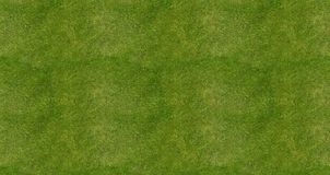 Soccer football field grass background. Top view Royalty Free Stock Photos