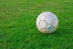 Soccer football field stadium grass background texture Stock Photography