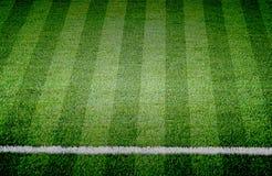 Soccer football grass field. The Soccer football grass field royalty free stock photo