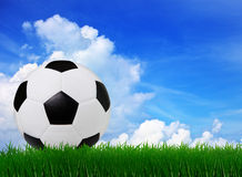 Soccer football on  green grass  Royalty Free Stock Photos