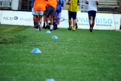 Soccer football training. Cones for marking on the field grass Stock Images