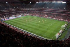 Soccer game stadium Royalty Free Stock Photos