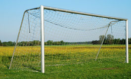 Soccer goal on blooming meadow Stock Photos