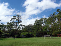 Soccer Goal in Park with large trees Stock Photos