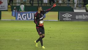 Soccer Goalie, Player, Futbol, Sports stock footage