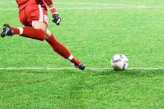 Soccer goalkeeper Royalty Free Stock Images