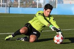 Soccer goalkeeper Royalty Free Stock Photos