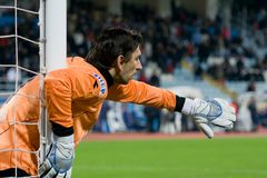 The soccer goalkeeper Royalty Free Stock Photography