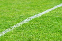 Soccer Grass. With white Line Stock Photos