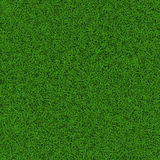 Soccer grass field Royalty Free Stock Photos