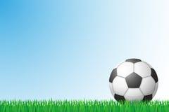 Soccer grass field vector illustration. On background Stock Photos
