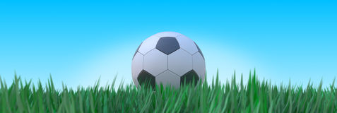 Soccer grass. Football on the green blade of grass Royalty Free Stock Image