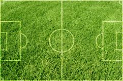 Soccer green grass Stock Images