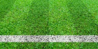 Soccer line in green grass of soccer field. Green lawn field pattern for sport background. Soccer line in green grass of soccer field. Green lawn field pattern stock images