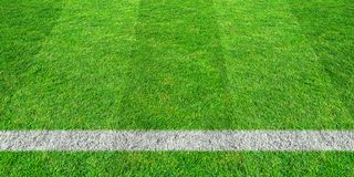 Soccer line in green grass of soccer field. Green lawn field pattern for sport background. Soccer line in green grass of soccer field. Green lawn field pattern royalty free stock photos