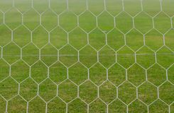 Soccer net. On green grass Royalty Free Stock Photos