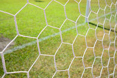 Soccer net on green grass background Stock Images