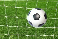 Soccer net on green grass Royalty Free Stock Photo