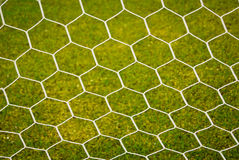 Soccer nets Stock Images
