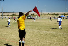 Soccer Official. Referee signaling from the sidelines of a soccer game Stock Photography