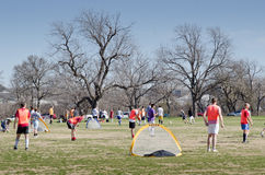 Soccer in a park Royalty Free Stock Photo