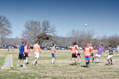 Soccer in a park Royalty Free Stock Images