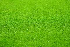 Soccer pitch. Grass background of the soccer (football) stadium pitch Stock Photo
