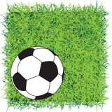 Soccer pitch Stock Images